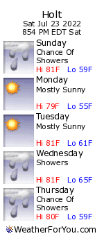 Holt, Michigan, weather forecast
