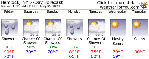 Hemlock, New York, weather forecast