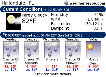 Latest Hallandale, Florida, weather conditions and forecast
